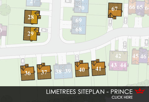 siteplan showing position of Prince new build home