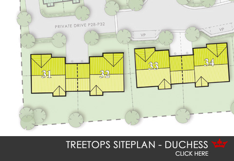 Siteplan for Treetops, South Kirkby